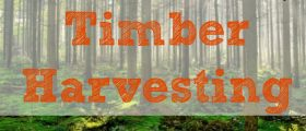 Economics Of Timber Harvesting