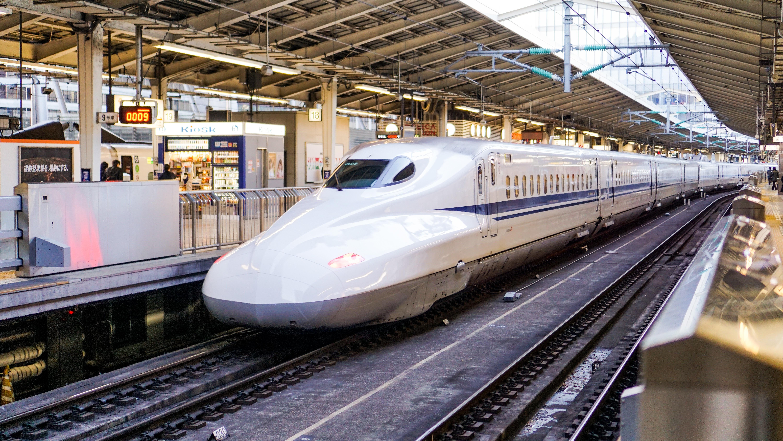 The Maglev Train Model