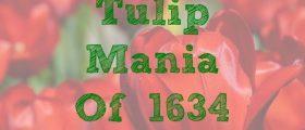 Tulip Mania Of 1634, tulips